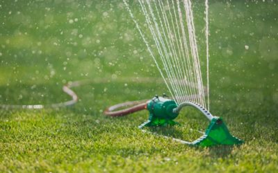 Lawn Watering Tips for Water Conscious Homeowners
